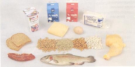 koolhydraten voeding